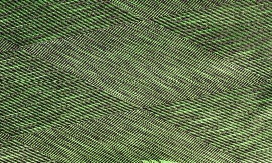 Foulard en soie Vert, Noir- à motifs, Dessin 200028